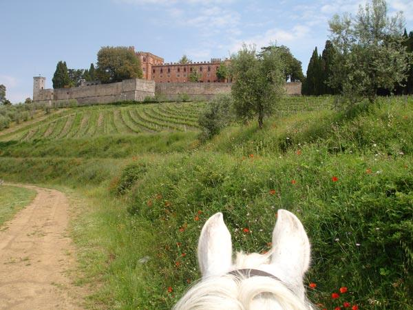Short break riding holiday in Tuscany