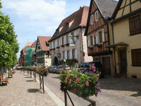 Alsace cycling holiday in Northern France