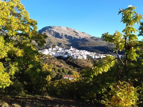 Creative writing holiday in Spain, with Anna Smith