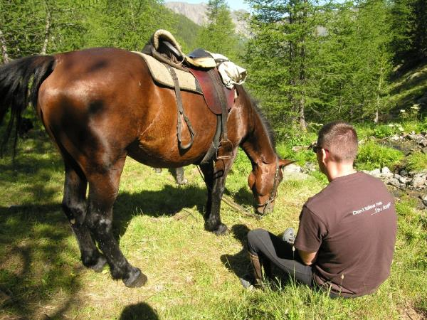 Horse riding holiday in the Mercantour
