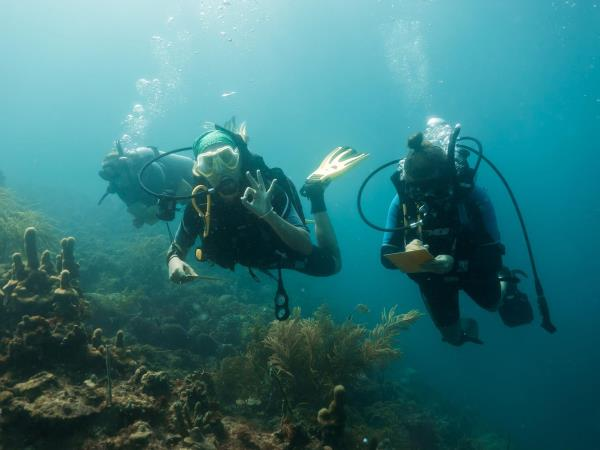 CARIBBEAN CORAL REEF CONSERVATION IN CARRIACOU