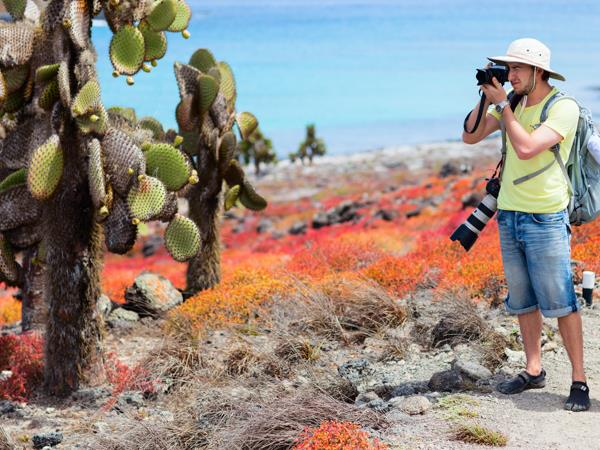 Galapagos & Ecuador tailor made holiday