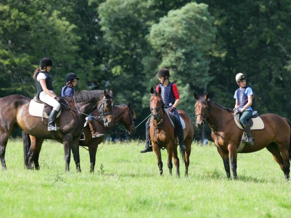 Ireland horse riding holiday, tailor made