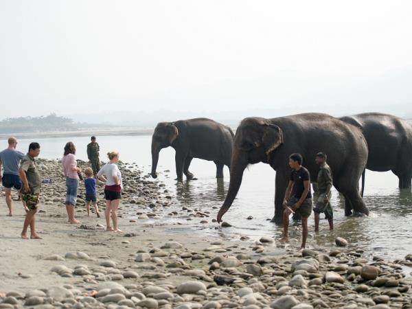 Nepal wildlife tour, East to West