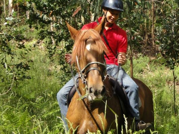 Horse riding holiday in Portugal