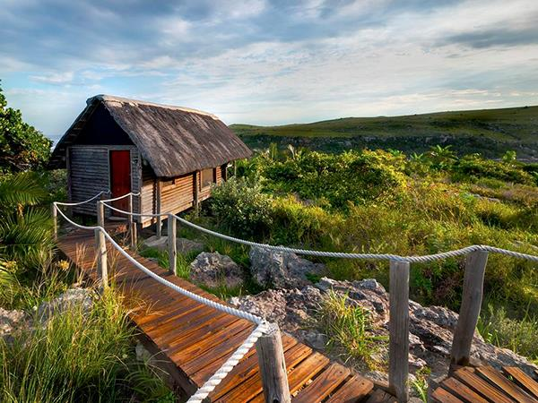 South Africa wild coast wildlife holiday