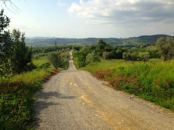 Tuscany farmstay self catering apartments, Italy
