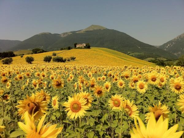 Italy cycling and food holiday, Abruzzo