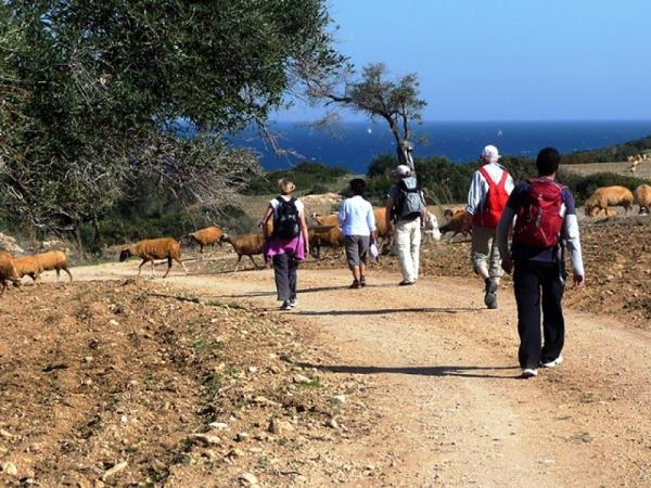Northern Cyprus small group walking holiday