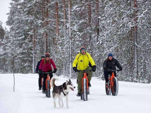 Christmas winter activity holiday, Finland