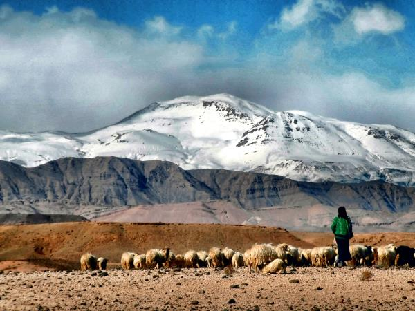 Trekking with shepherds in the Atlas Mountains