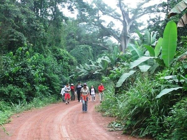Ghana nature & hiking tour