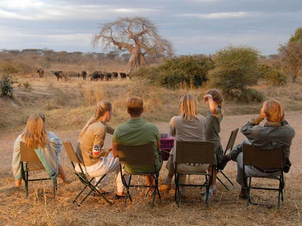 Tanzania safari & beach holiday
