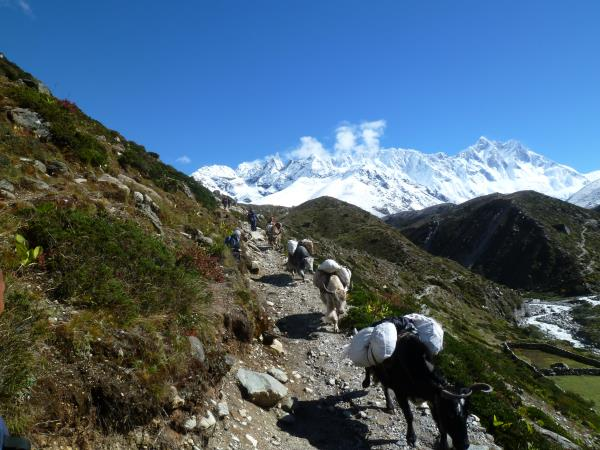 Everest Base Camp luxury trek in Nepal
