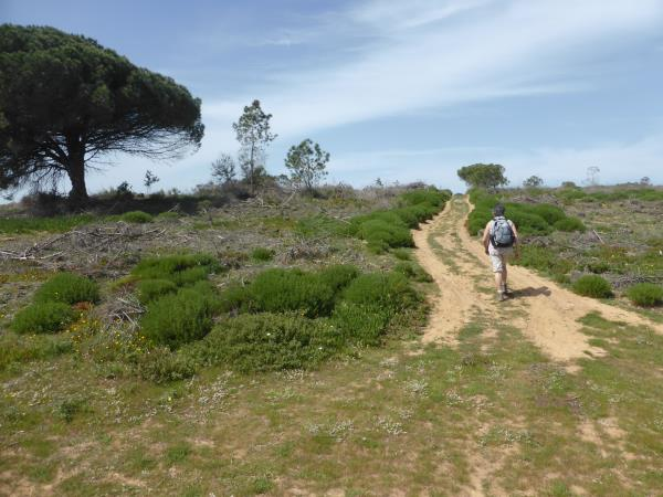 Portugal walking holiday, highlights of Rota Vicentina
