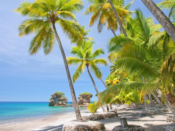 Anse Chastanet resort accommodation in Saint Lucia
