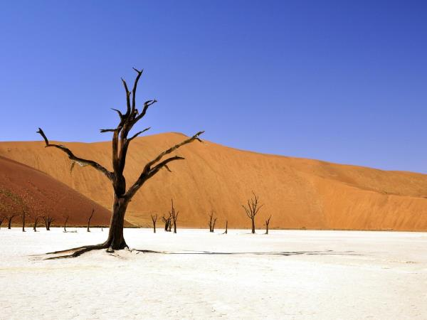 Namibia self drive adventure holiday