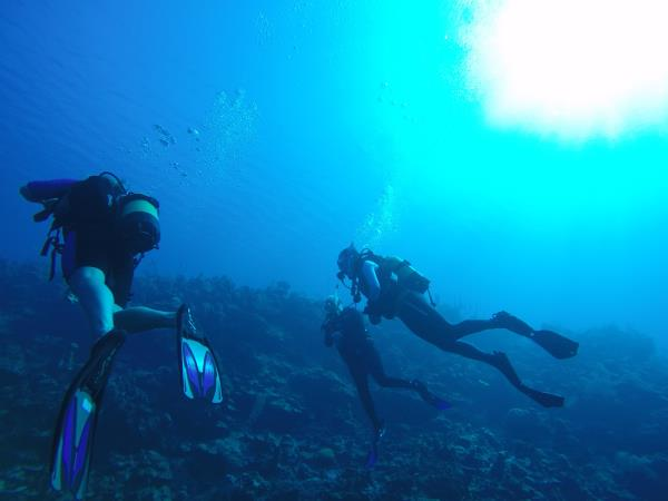 Scuba diving or snorkeling holiday in Cuba