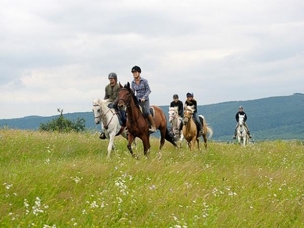 Safari Run Plano >> Horse riding holiday in Romania. Helping Dreamers Do.