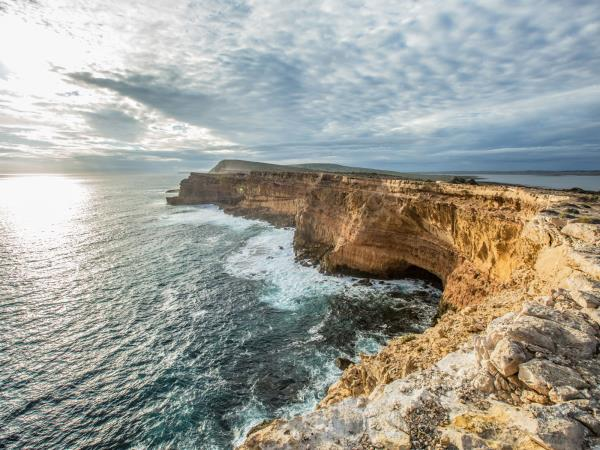 Kangaroo Island and Eyre Peninsula tour, Australia