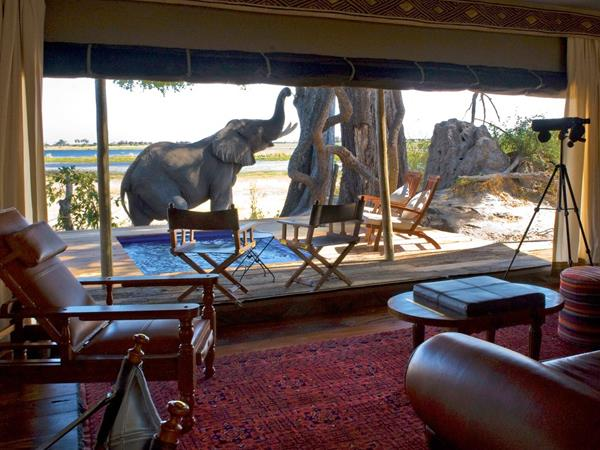 Luxury Botswana safari & Victoria Falls