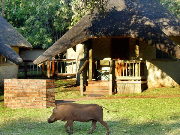 Zimbabwe & Botswana self drive holiday