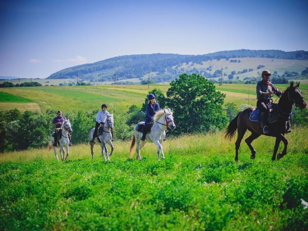 Horse riding holidays in Transylvania