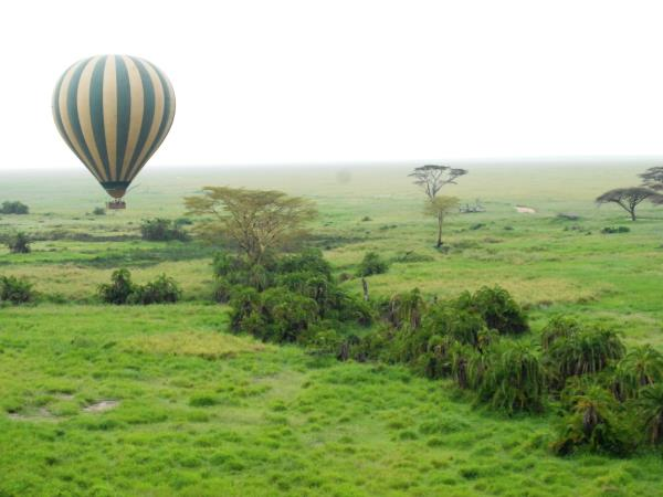 Serengeti safari holiday, Tanzania