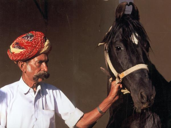 India horse riding holidays