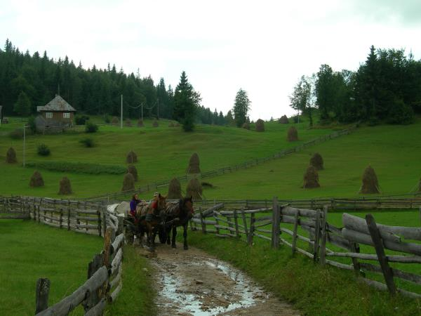 Guided walking holiday in Romania