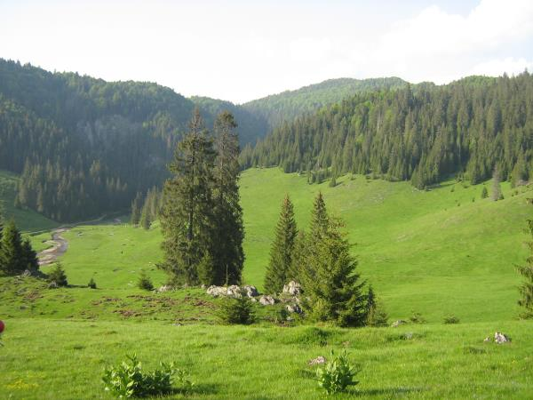 Romania walking holiday
