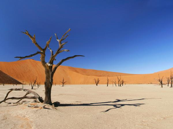 Classic Namibia tailor made tour