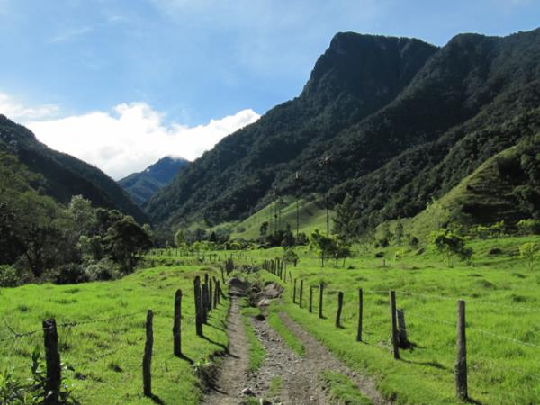 Small group trekking in Colombia