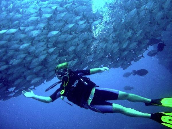 Scuba diving in the Coco Islands, Costa Rica