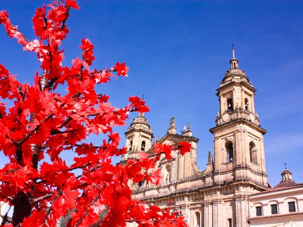 Uncovering Colombia, tailor made tours