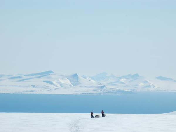 Spitsbergen mushing expedition