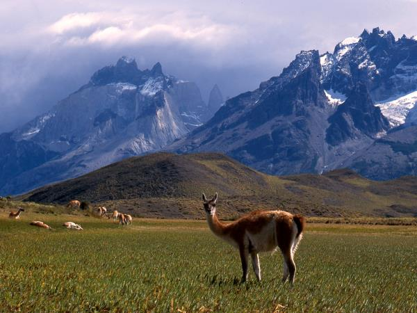 Patagonia holiday, Argentina and Chile