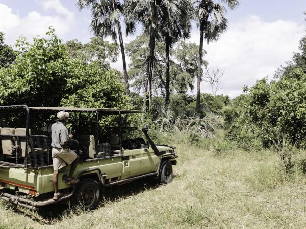 Zimbabwe national parks with Mozambique beach safari