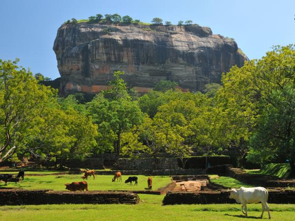 Sri Lanka holiday including the north