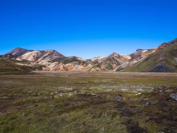 Laugavegur Trail trekking holiday in Iceland