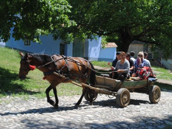 Romania family activity holiday, small group