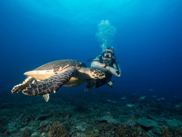 Seychelles Island conservation holiday