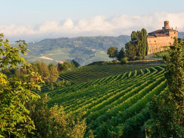 Piedmont Hills food holidays in Italy