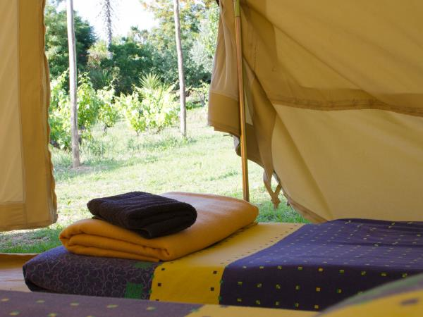 Glamping in Central Portugal