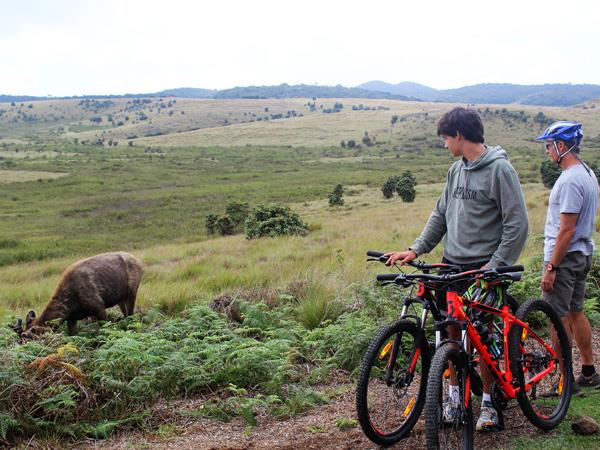 Walking & Cycling in Sri Lanka