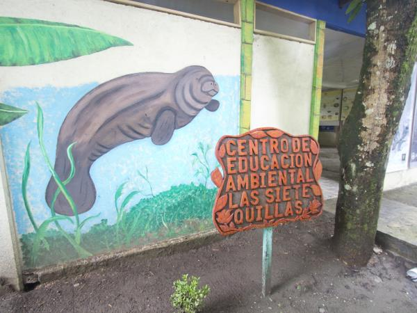 Costa Rica Leatherback turtle conservation holiday