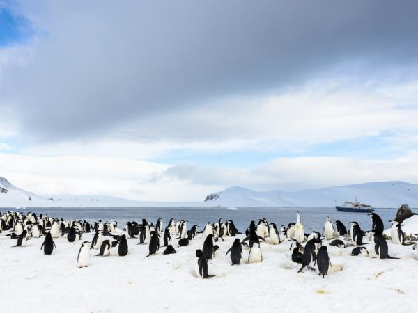 Pristine Antarctica holiday