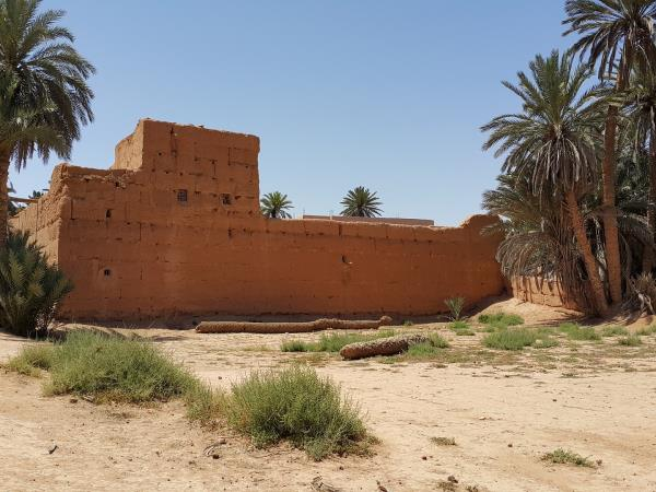 Southern Morocco tour, Oases and Kasbahs