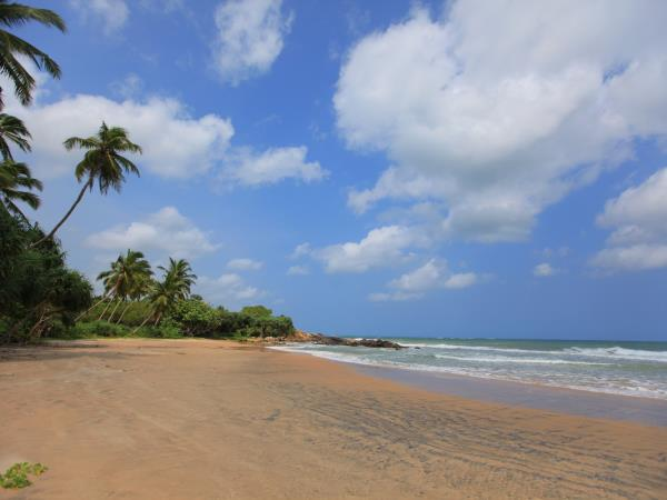 Sri Lanka holiday, culture & relaxation