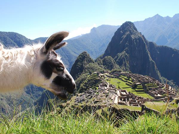 Classic Peru tailor made tour